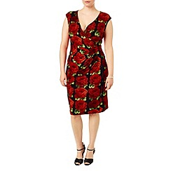Studio 8 - Sizes 16-24 Red rachel rose dress