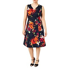 Studio 8 - Sizes 16-24 Harper dress
