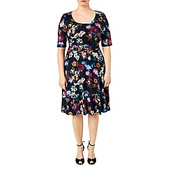 Studio 8 - Sizes 16-24 Multi-coloured macie print dress