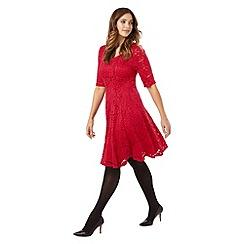 Studio 8 - Sizes 16-24 Viola dress