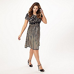 Studio 8 - Sizes 16-24 Carina dress