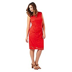 Studio 8 - Sizes 16-24 Isadora Dress