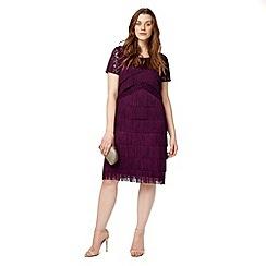 Studio 8 - Sizes 12-26 Burgundy kylie fringe dress