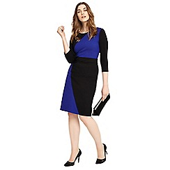 Studio 8 - Sizes 12-26 Cobalt and Black caitlin dress