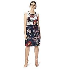 Studio 8 - Sizes 12-26 Sammie Dress