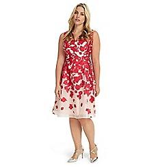 Studio 8 - Sizes 12-26 jasmine dress