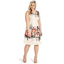 Studio 8 - Sizes 12-26 peyton dress