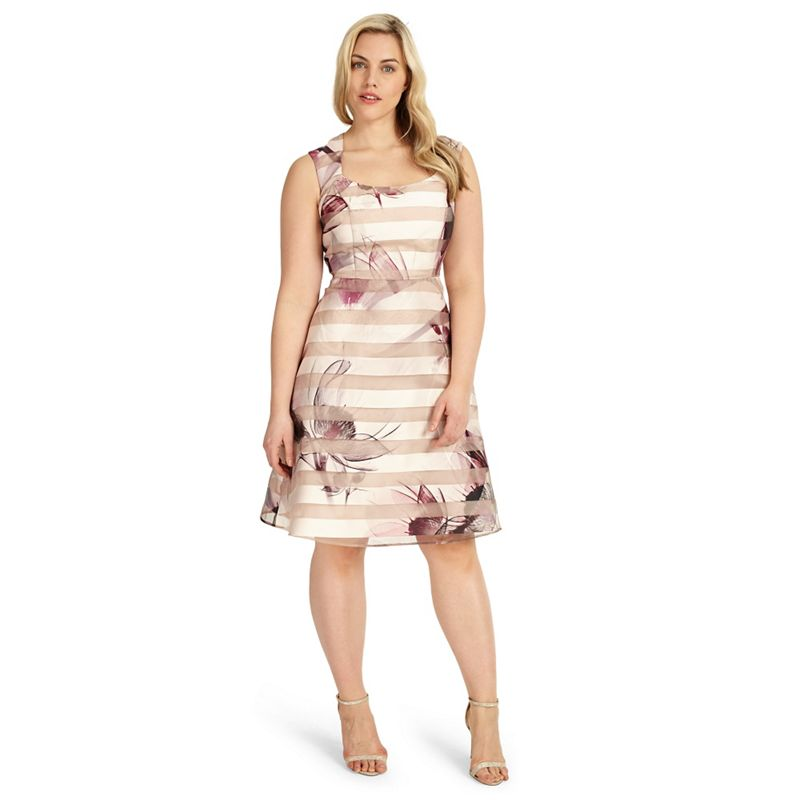 Studio 8 Sizes 12-26 Megan Dress