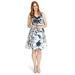 Studio 8 - Sizes 12-26 Antonia dress
