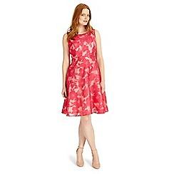 Studio 8 - Sizes 12-26 hot pink ellen dress