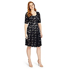 Studio 8 - Sizes 12-26 navy viola dress