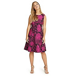 Studio 8 - Sizes 12-26 Black and Pine liberty floral jacquard dress