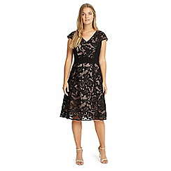 Studio 8 - Sizes 12-26 Black cleo lace dress