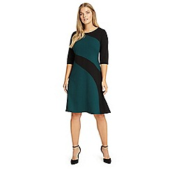 Studio 8 - Sizes 12-26 Green and Black alicia dress