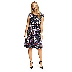 Studio 8 - Sizes 12-26 Purple emma floral print dress