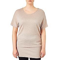 Studio 8 - Sizes 16-24 Hazelwood carrie short sleeve knit jumper