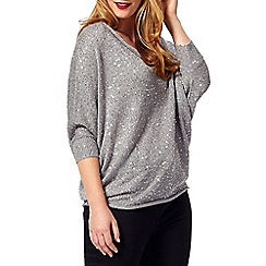 Studio 8 - Sizes 16-24 Silver sharon jumper