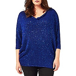 Studio 8 - Sizes 16-24 Blue sharon jumper