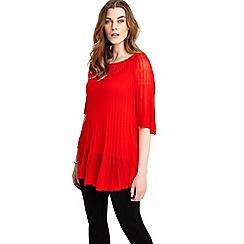 Studio 8 - Sizes 12-26 Polyanna Knit Jumper