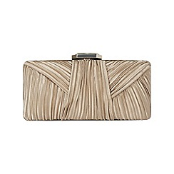 Phase Eight - Champagne macy jewel clasp bag