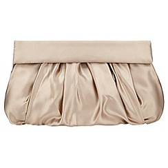 Phase Eight - Dixie satin clutch bag