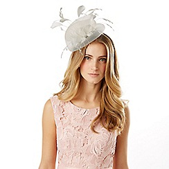 Phase Eight - Rose Fascinator