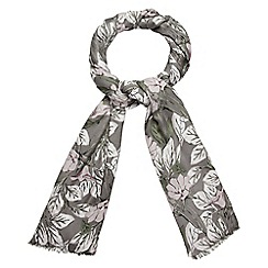 Phase Eight - Floris Scarf