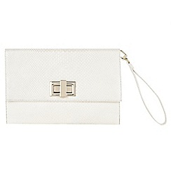 Phase Eight - Ally Leather Clutch Bag