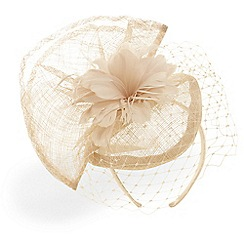 Phase Eight - Carley flower and veil fascinator
