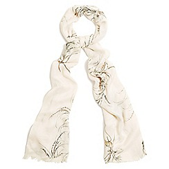 Phase Eight - Cream Beatrix sketchy floral print scarf