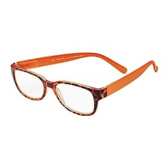Sight Station - Alex tortoise and orange fashion reading glasses