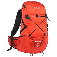 Regatta - Pepper blackfell 25l backpack
