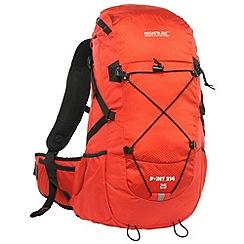 Regatta - Pepper blackfell 25l backpack