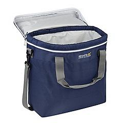 Regatta - Navy Freska 15 litre cool bag