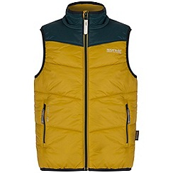 Regatta - Kids Yellow Icebound body warmer