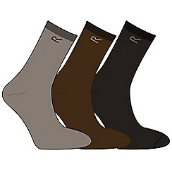 Regatta - Brown mens triple sock set