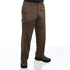 Regatta - Roasted lined crossfell trousers - short leg length