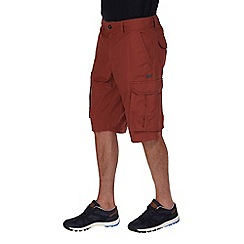 Regatta - Mahogany shoreway vintage wash short