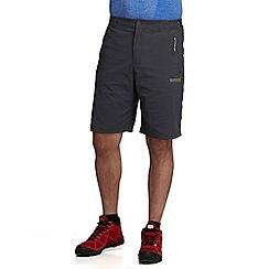 Regatta - Grey fellwalk stretch short