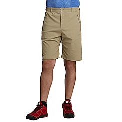Regatta - Beige fellwalk stretch short