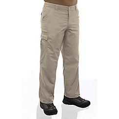 Regatta - Parchment crossfell ii trouser - long