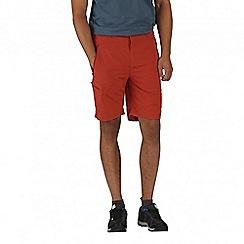Regatta - Orange Leesville shorts