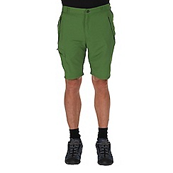 Regatta - Alpine green leesville quick drying shorts