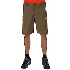 Regatta - Gold sand fellwalk stretch shorts