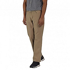 Regatta - Brown Landyn trouser longer length