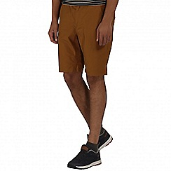 Regatta - Brown sanjaro shorts