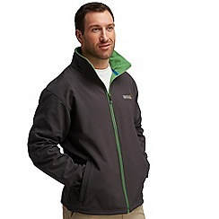 Regatta - Dark grey (green) cera softshell jacket