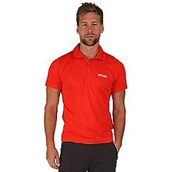 Regatta - Orange maverik polo shirt