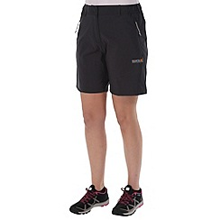 Regatta - Grey fellwalk short