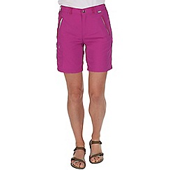 Regatta - Purple chaska lightweight shorts